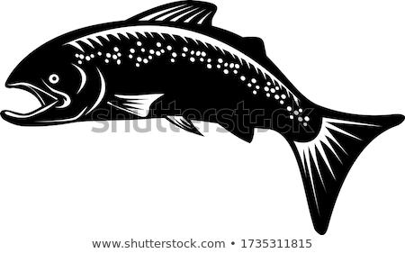 Pisztráng hal ugrik retro feketefehér stílus Stock fotó © patrimonio