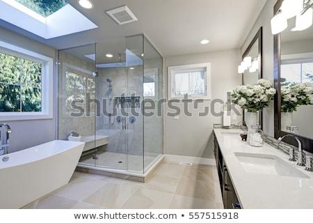 branco · banheira · banheiro · toalha · parede · projeto - foto stock © arquiplay77