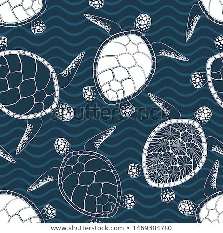 Schildpad golf klein zwemmen golven geïllustreerd Stockfoto © Soleil