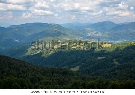 Bergen Oekraïne wandelen landschap bewolkt hemel Stockfoto © Arsgera