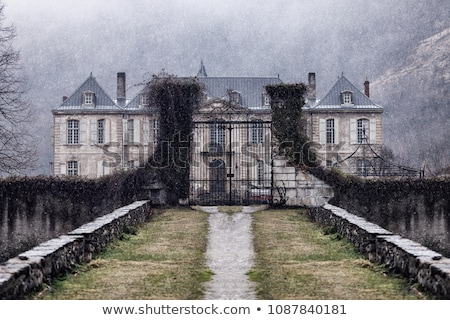 abandoned mansion Stock photo © sirylok