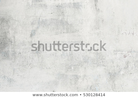 grunge · mur · peint · ciment · blanche - photo stock © nikitabuida