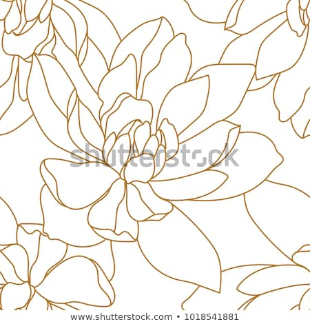 roses damask seamless pattern stock photo © elak