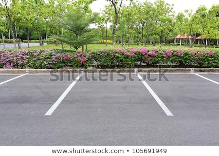 White car park sign on black asphalt. Stock photo © latent