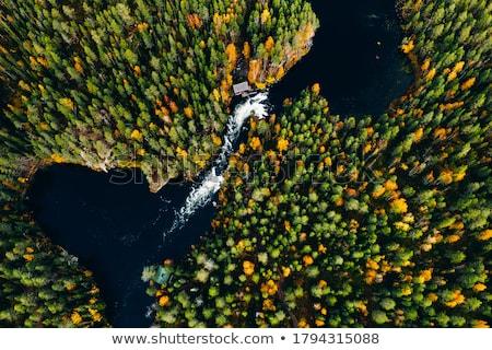 Финляндия осень озеро парка небе деревья Сток-фото © Estea