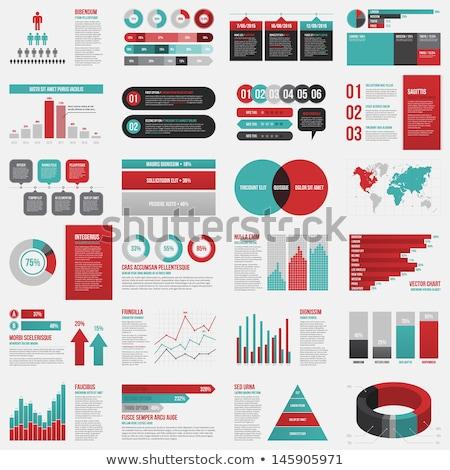 Retro infografika elemek grafika üzlet internet Stock fotó © indie