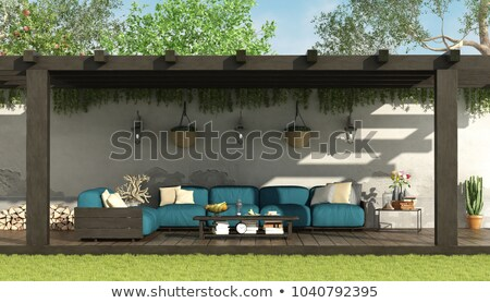 Patio under the Pergola stock photo © eldadcarin