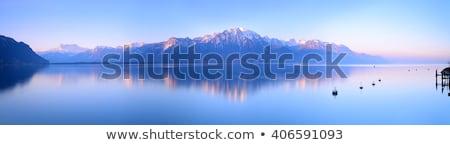 ストックフォト: 湖 · スイス · 表示 · ツリー