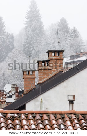Foto stock: Aged Clay Roof Tiles Snowed Under Winter Snow