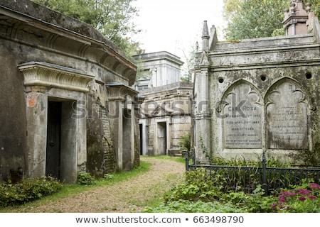 velho · cemitério · cênico · ver · rural · foco - foto stock © chrisdorney