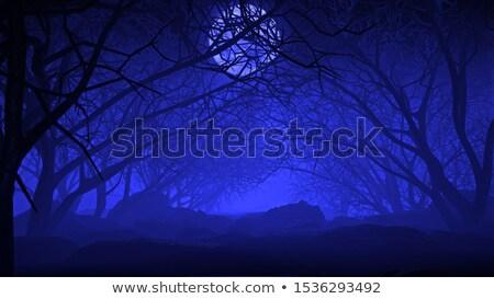 halloween evening stock photo © solarseven