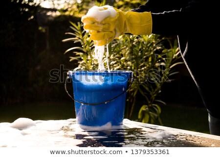 wringing a sponge stock photo © fisher