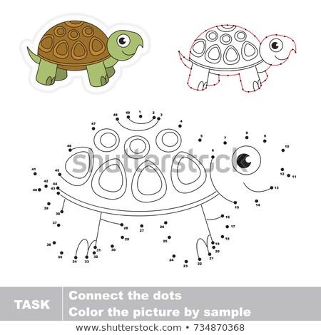 Stippel zee schildpad schets natuur schoonheid Stockfoto © Soleil