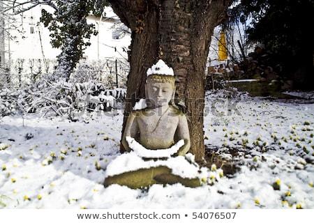 Будду статуя медитации Вишневое дерево улыбка Сток-фото © meinzahn