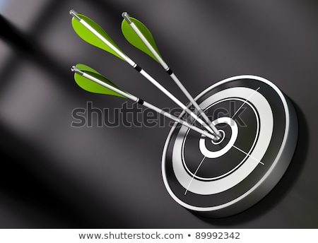 Risk Management - Arrows Hit in Target. Stock photo © tashatuvango