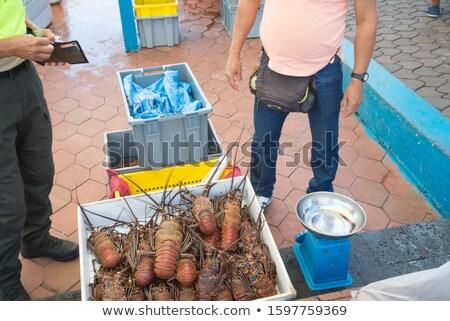 homár · karom · üzlet · szerződés - stock fotó © devon