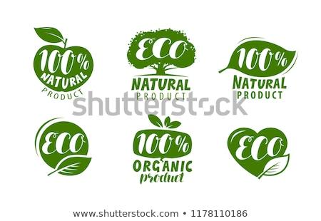 Naturale eco prodotto etichetta foglie cliente Foto d'archivio © vadimone
