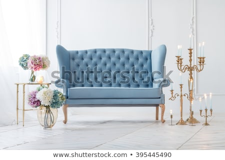 Rose flower in blue vase near window Stock photo © dariazu