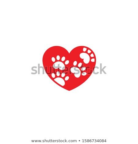 Lábnyom piros útvonal szív lábnyomok fehér Stock fotó © limbi007