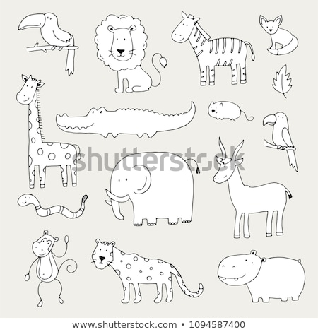 Firka elefánt rajz rajz szafari textúra Stock fotó © netkov1