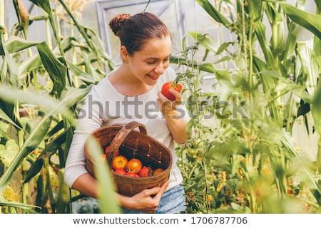 vrouw · groenten · tuin · man · portret - stockfoto © anna_om