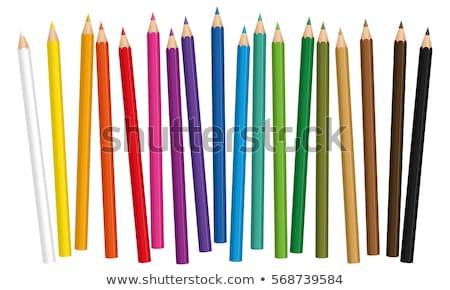 Szett színes ceruzák izolált fehér iroda Stock fotó © tetkoren