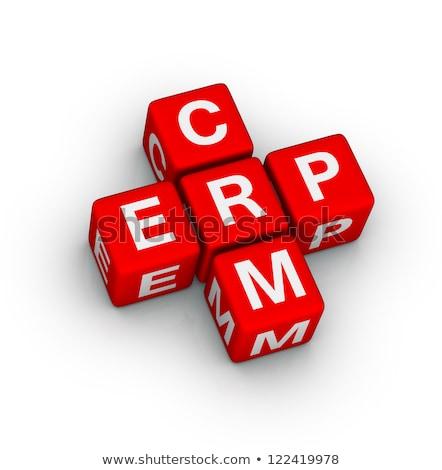 Word - CRM on Red Puzzles. Stock photo © tashatuvango