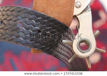 Cinturón revólver marrón color metal placa Foto stock © Alina12