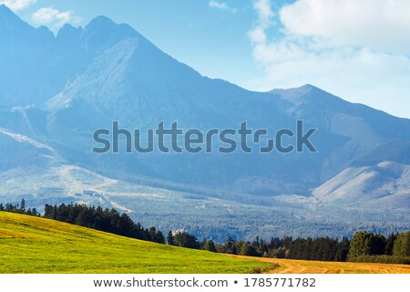 Inspiring Mountains Landscape View, sunny day in summer Tatras Stock photo © blasbike
