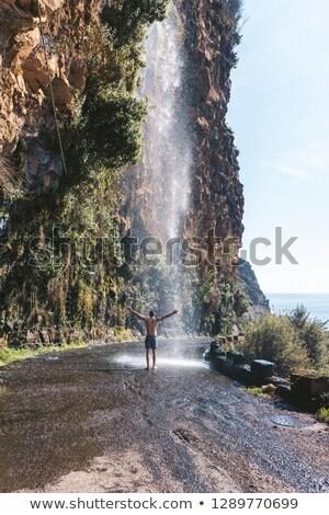Vízesés Madeira sziget vad természet Stock fotó © compuinfoto