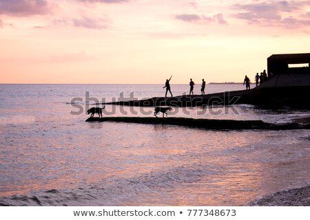 Foto d'archivio: Jetty Sunset And Boy Fishing With Dog