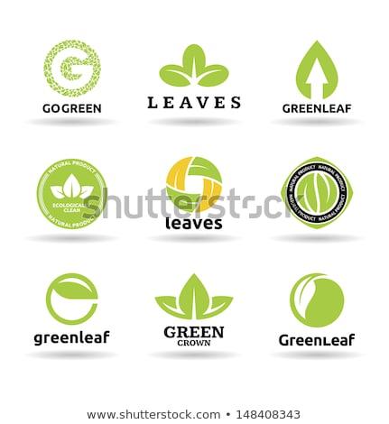 nove · foglie · verde · natura · ecologia · abstract - foto d'archivio © acong_kecil