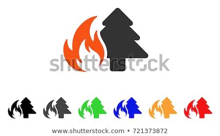 Pożar lasu wildfire palenie drzewo czerwony pomarańczowy Zdjęcia stock © Hermione
