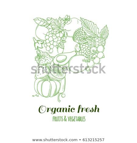 natuurlijke · product · veganistisch · voedsel · sticker · ingesteld - stockfoto © tandav