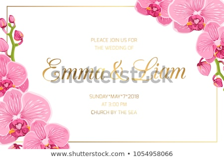 golden orchid on a pink background Stock photo © blackmoon979