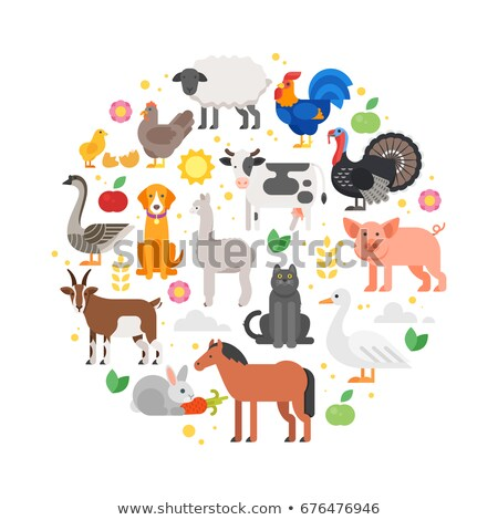 Stock photo: round composition of farm animals icons.