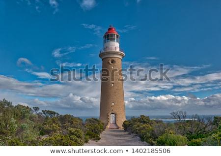 világítótorony · üldözés · park · kenguru · sziget · Dél-Ausztrália - stock fotó © dirkr