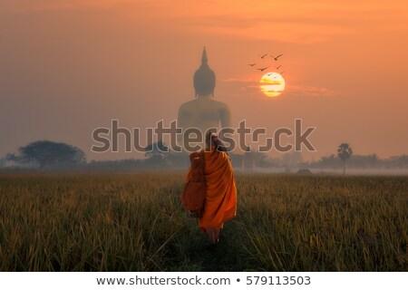 Stock photo: Walking Buddha Image Thailand