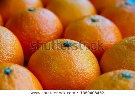 Tigela tangerina salada branco doce Foto stock © Digifoodstock
