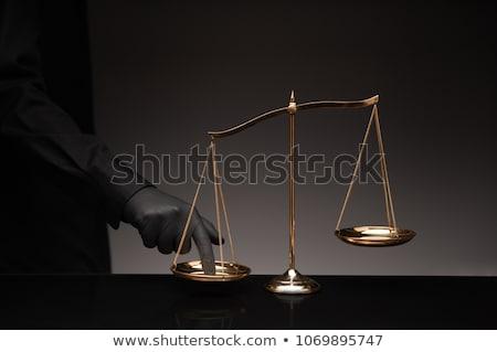 helyes · politika · kettő · választás · konzervatív · értékek - stock fotó © peterguess