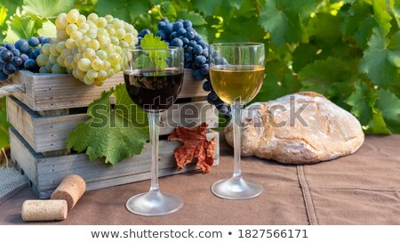wine bottles between vine leaves stock photo © simply