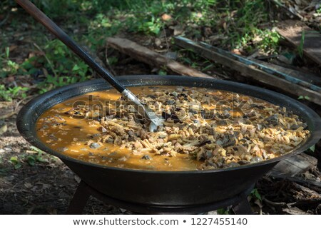 cooking dish on retro wood fueled stove Stock photo © milsiart
