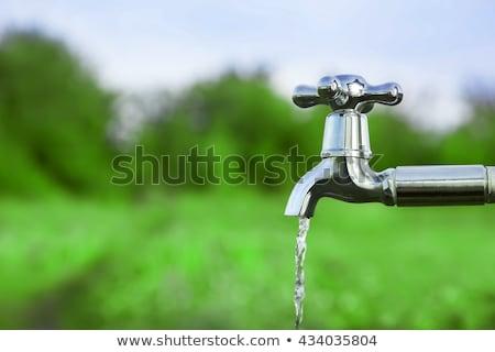 現代 · 給水栓 · ステンレス鋼 · 仕上げ · バス · シンク - ストックフォト © maya2008