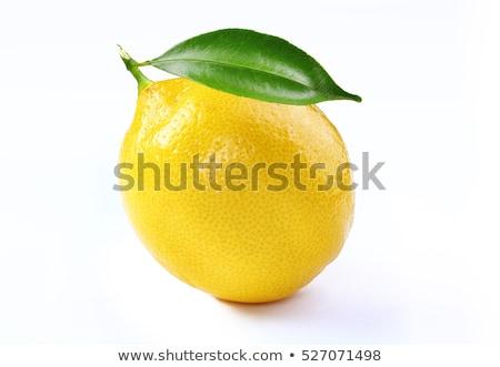 Cytryny odizolowany biały charakter owoców ramki Zdjęcia stock © myfh88