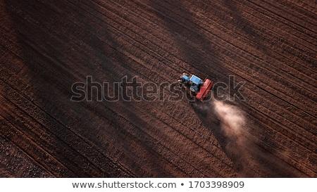 trator · colheita · ensolarado · verão · dia · comida - foto stock © artjazz
