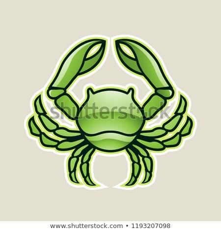 Verde caranguejo câncer ícone vetor Foto stock © cidepix
