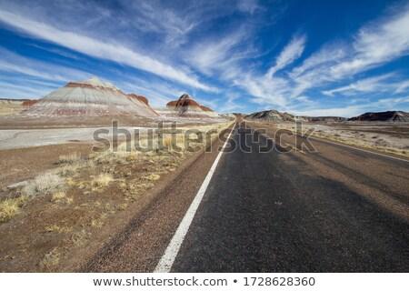描いた · 砂漠 · 風光明媚な · 風景 · 古代 · ツリー - ストックフォト © fotogal