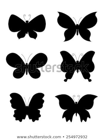 Fluture miniaturi logo-ul icoană proiect abstract Imagine de stoc © blaskorizov