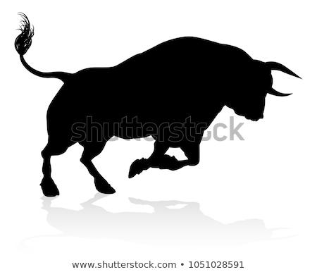 Bull silhouette élevé qualité détaillée Homme Photo stock © Krisdog