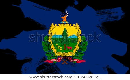 Mintázott grunge integet zászló Vermont vektor Stock fotó © nazlisart
